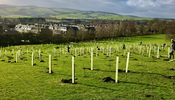 Working towards a Greener Skipton and Craven District